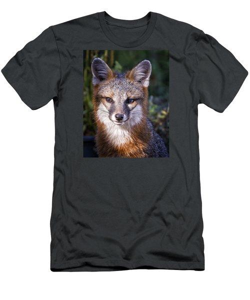 Fox Gaze Men's T-Shirt (Athletic Fit)