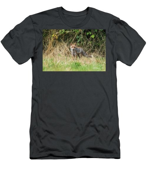 Fox In The Woods Men's T-Shirt (Athletic Fit)