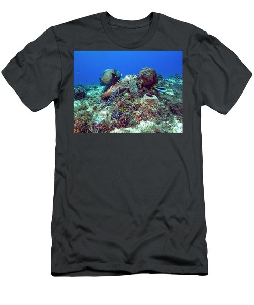 French Angelfish And The Green Turtle Men's T-Shirt (Athletic Fit)