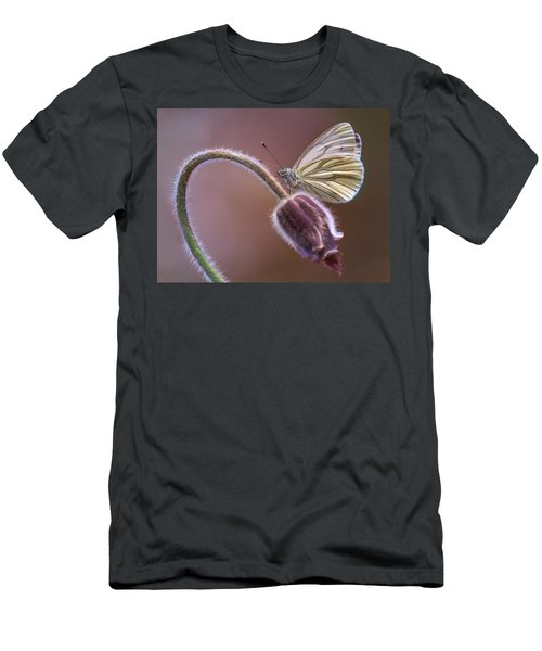 Fresh Pasque Flower And White Butterfly Men's T-Shirt (Slim Fit) by Jaroslaw Blaminsky