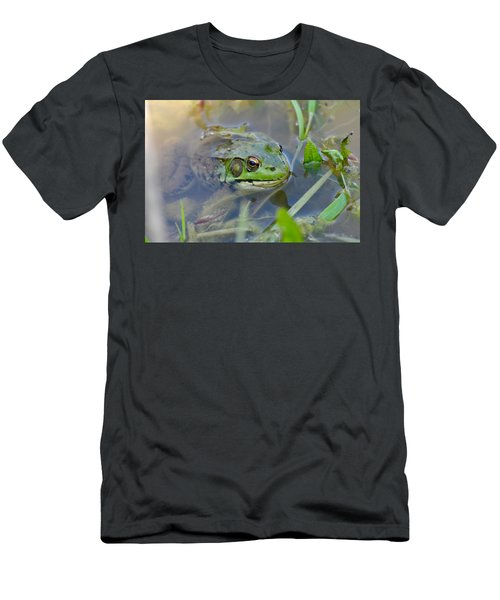 Frog Hiding In The Pond Men's T-Shirt (Slim Fit) by Lisa DiFruscio