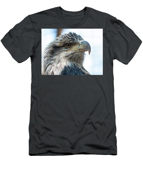 From The Bird's Eye Men's T-Shirt (Athletic Fit)