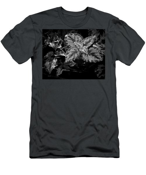 Frosted Hosta Men's T-Shirt (Athletic Fit)
