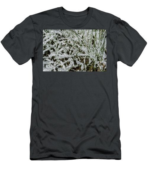 Frosty Grass Men's T-Shirt (Athletic Fit)