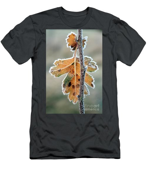 Frosty Leaf Men's T-Shirt (Athletic Fit)