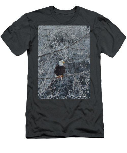 Frosty Morning Eagle Men's T-Shirt (Athletic Fit)