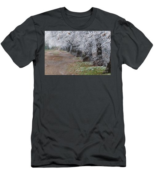 Frozen Pathway Men's T-Shirt (Athletic Fit)
