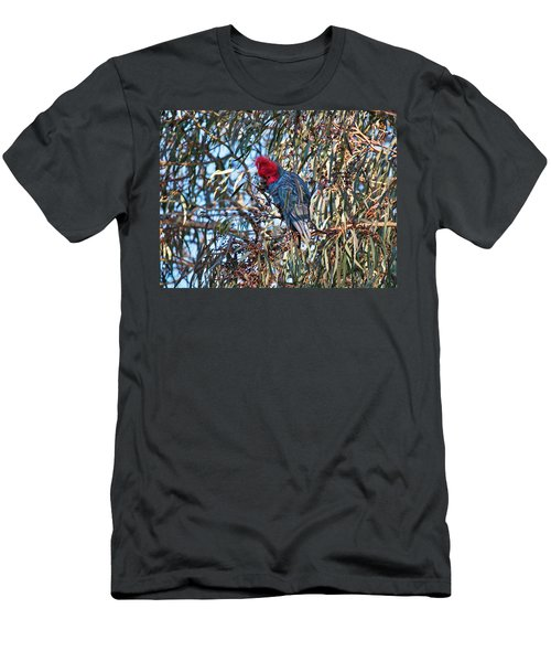 Men's T-Shirt (Athletic Fit) featuring the photograph Gang Gang Cockatoo - Canberra - Australia by Steven Ralser