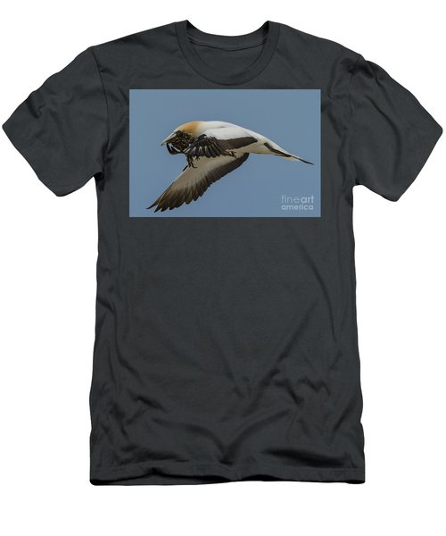 Men's T-Shirt (Slim Fit) featuring the photograph Gannets 1 by Werner Padarin