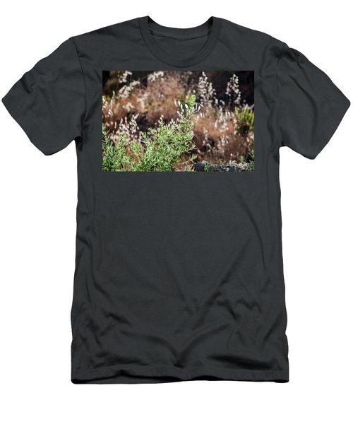 Garden Contre Jour 2 Men's T-Shirt (Athletic Fit)