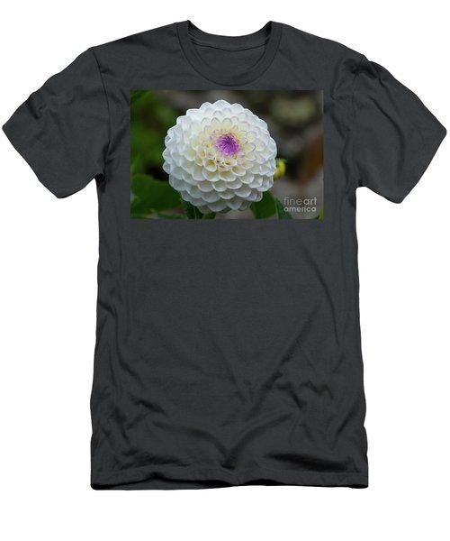 Gaylen Rose Dahlia 1 Men's T-Shirt (Athletic Fit)