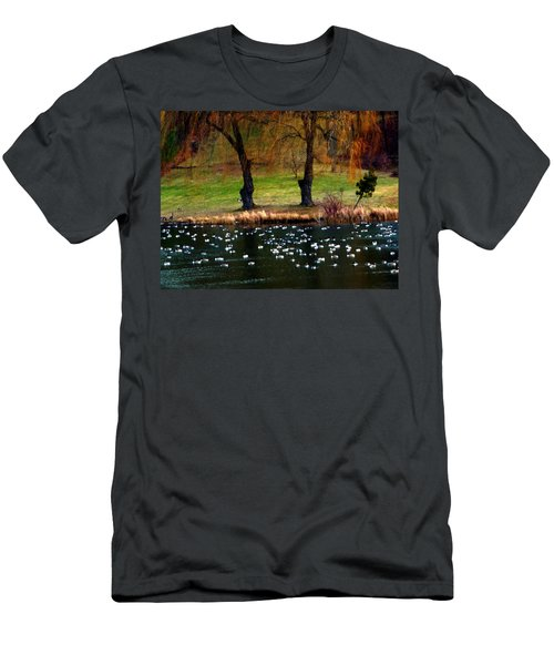 Geese Weeping Willows Men's T-Shirt (Athletic Fit)