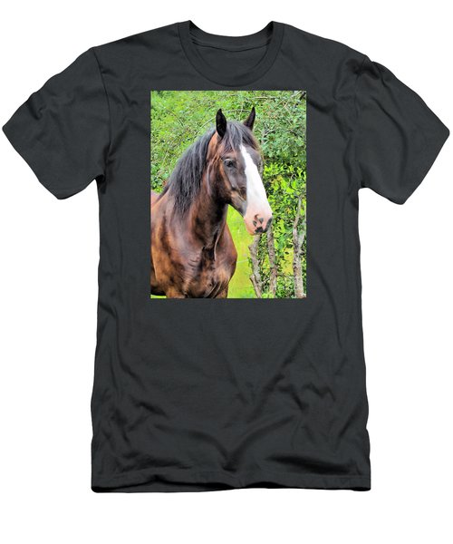 Gentle Soul Men's T-Shirt (Slim Fit) by Elizabeth Dow
