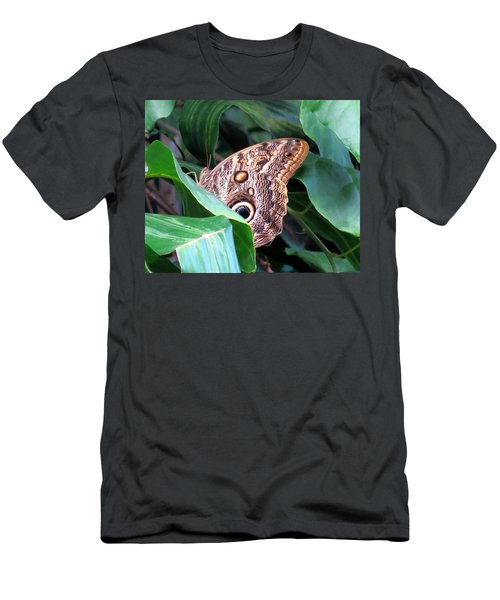 Giant Owl Butterfly Men's T-Shirt (Slim Fit) by Betty Buller Whitehead