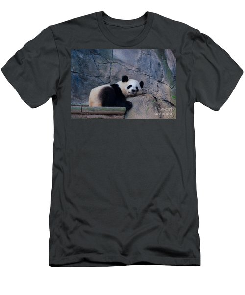 Giant Panda Men's T-Shirt (Slim Fit) by Donna Brown