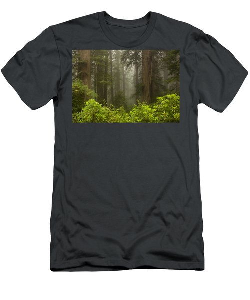 Giants In The Mist Men's T-Shirt (Athletic Fit)