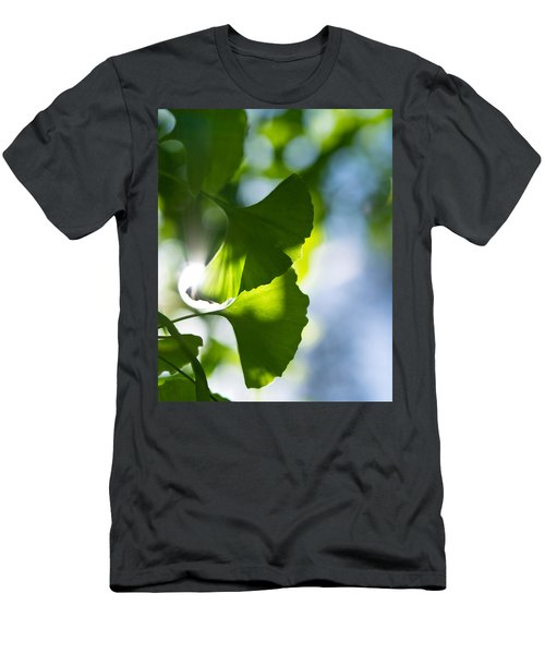Gingko Leaves In The Sun Men's T-Shirt (Athletic Fit)