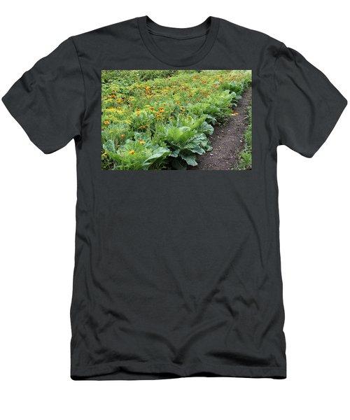 Glenveagh Castle Gardens 4276 Men's T-Shirt (Athletic Fit)