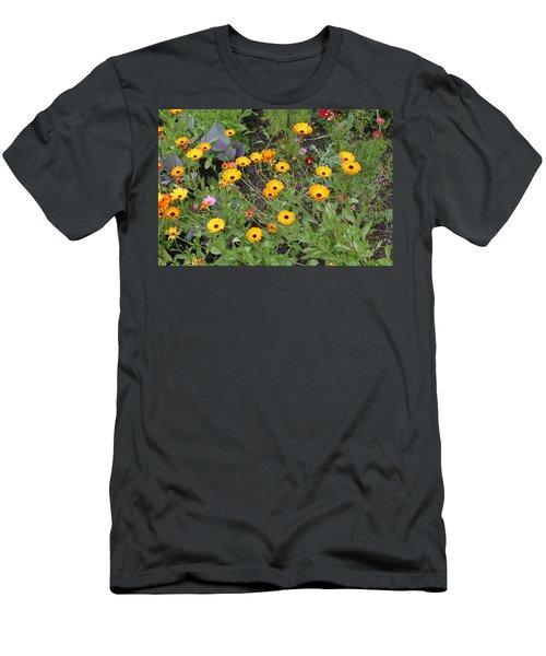 Glenveagh Castle Gardens 4279 Men's T-Shirt (Athletic Fit)