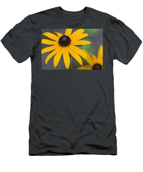 Gloriosa Daisies Men's T-Shirt (Athletic Fit)