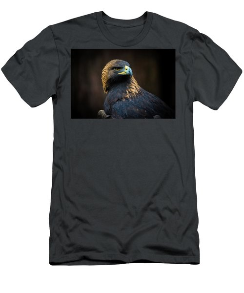 Golden Eagle 3 Men's T-Shirt (Athletic Fit)