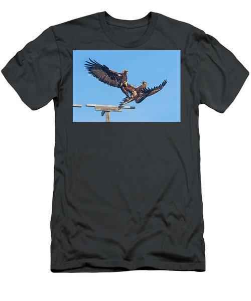 Golden Eagle Courtship Men's T-Shirt (Athletic Fit)