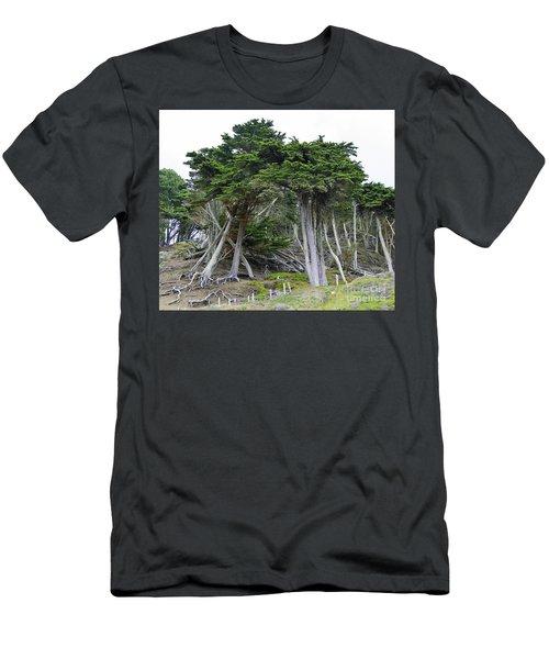 Golden Gate Sentinels Men's T-Shirt (Athletic Fit)