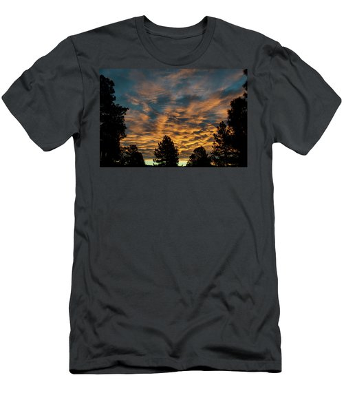 Golden Winter Morning Men's T-Shirt (Athletic Fit)