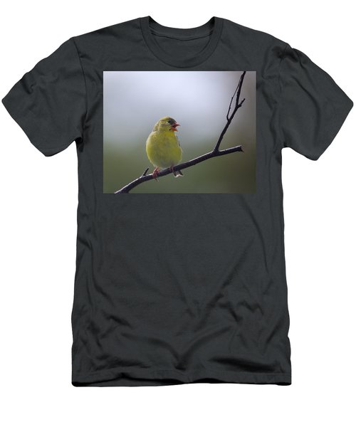 Men's T-Shirt (Slim Fit) featuring the photograph Goldfinch Song by Susan Capuano