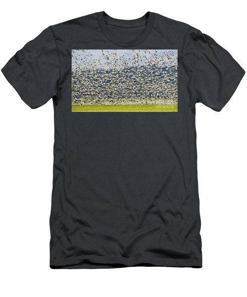 Goose Storm Men's T-Shirt (Athletic Fit)