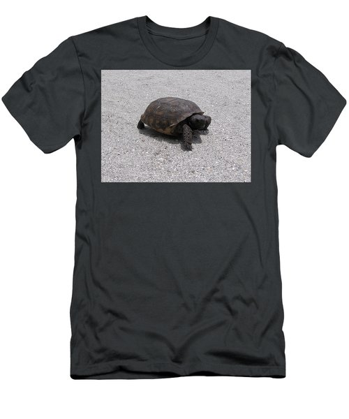 Gopher Tortoise  Men's T-Shirt (Athletic Fit)