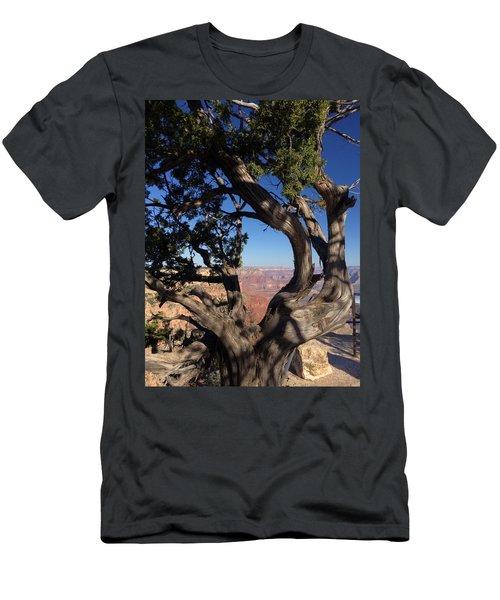 Grand Canyon No. 6 Men's T-Shirt (Athletic Fit)