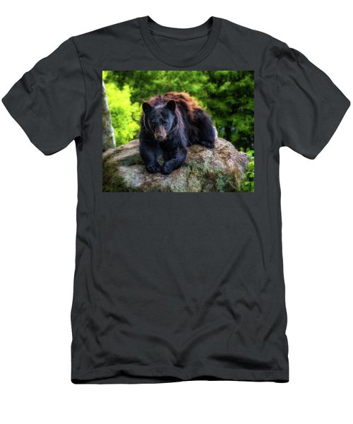 Grandfather Mountain Black Bear Men's T-Shirt (Athletic Fit)