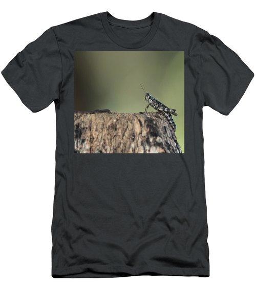 Grasshopper Great River New York Men's T-Shirt (Slim Fit) by Bob Savage