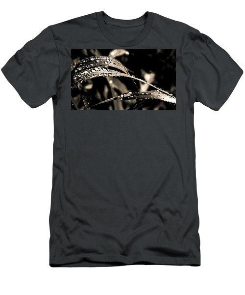 Grassland Men's T-Shirt (Athletic Fit)