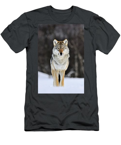 Gray Wolf In The Snow Men's T-Shirt (Athletic Fit)