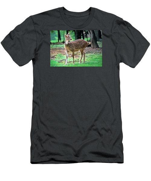 Grazing Men's T-Shirt (Slim Fit) by Marion Johnson