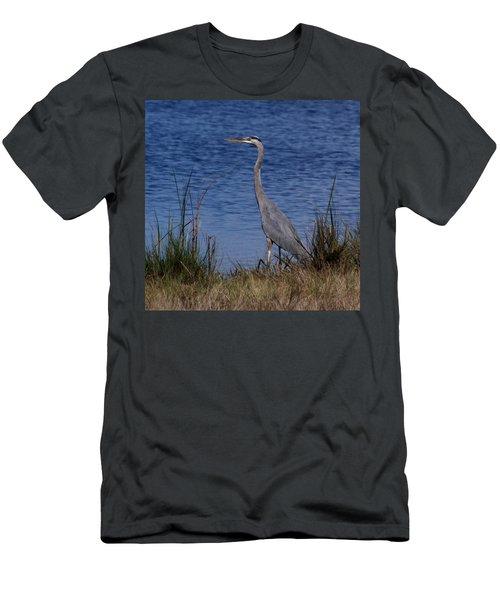 Great Blue Men's T-Shirt (Athletic Fit)