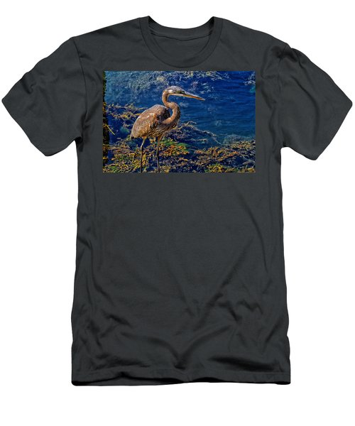 Great Blue Heron And Seaweed Men's T-Shirt (Athletic Fit)