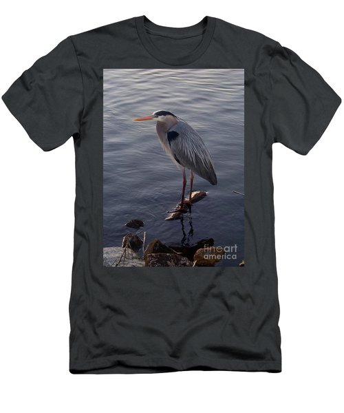 Men's T-Shirt (Slim Fit) featuring the photograph Great Blue Heron At Evening by Carol  Bradley