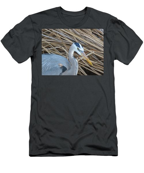Great Blue Heron On Spi Men's T-Shirt (Athletic Fit)