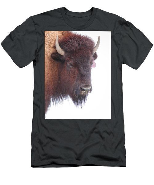 Great Buffalo Men's T-Shirt (Athletic Fit)