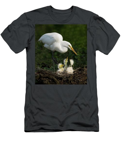 Great Egret With Chicks Men's T-Shirt (Athletic Fit)