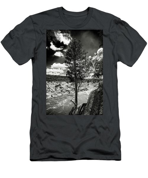 Great Falls Tree Men's T-Shirt (Slim Fit) by Paul Seymour
