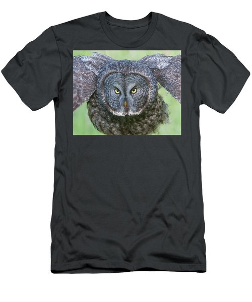 Great Gray Owl Flight Portrait Men's T-Shirt (Athletic Fit)