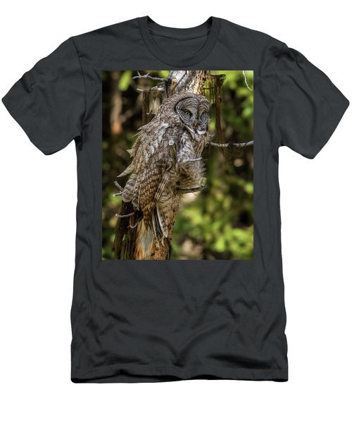 Great Grey Owl In Windy Spring Men's T-Shirt (Slim Fit) by Yeates Photography