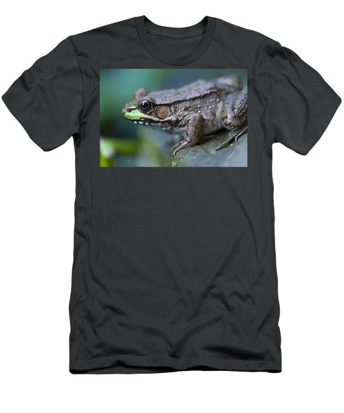 Green Frog Men's T-Shirt (Athletic Fit)