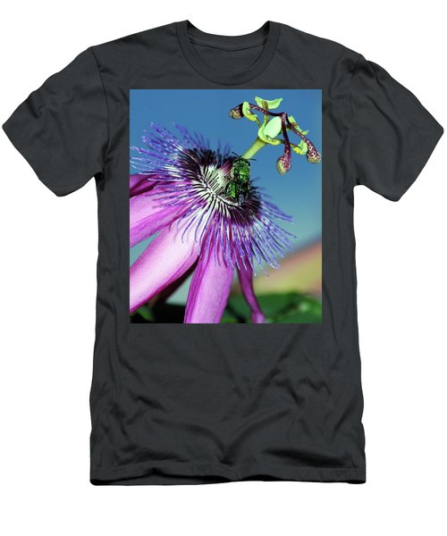 Green Hover Fly On Passion Flower Men's T-Shirt (Athletic Fit)
