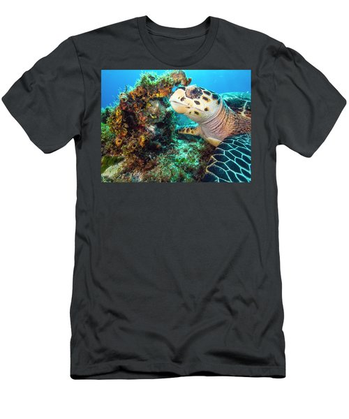 Green Turtle Profile Men's T-Shirt (Athletic Fit)