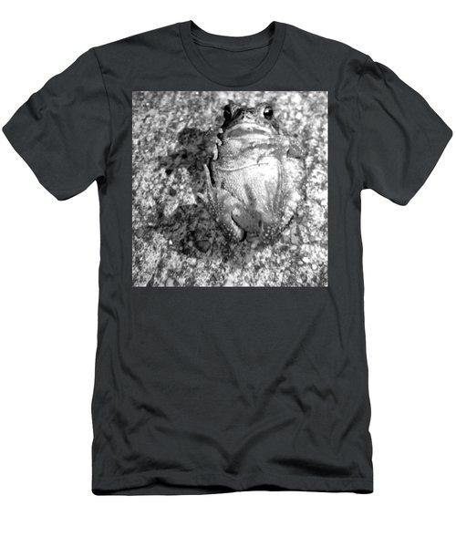 Gregoree The Stranded Frog Men's T-Shirt (Athletic Fit)